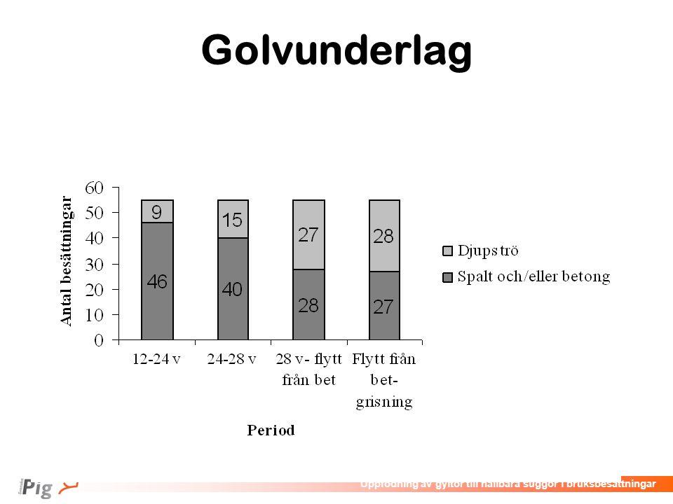 Föreläsningsrubrik / temaUppfödning av gyltor till hållbara suggor i bruksbesättningar Golvunderlag