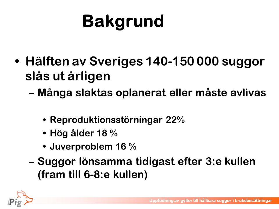 Föreläsningsrubrik / temaUppfödning av gyltor till hållbara suggor i bruksbesättningar Bakgrund •Hälften av Sveriges 140-150 000 suggor slås ut årlige