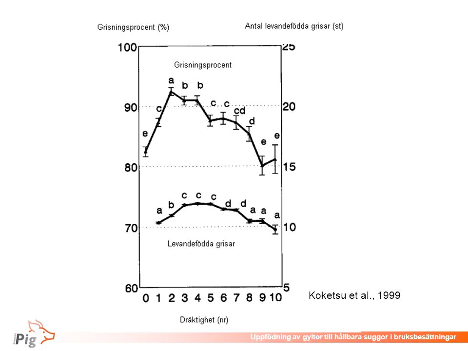 Föreläsningsrubrik / temaUppfödning av gyltor till hållbara suggor i bruksbesättningar Utfodring av växande gyltor •Därefter och fram till första grisning utfodras gyltor restriktivt med ett enhets-/digivningsfoder: –Lämpligt mineral- och vitamininnehåll –Lägre innehåll av råprotein och aminosyror är slaktgrisfoder –Ger lägre tillväxthastighet och större fettansättning.