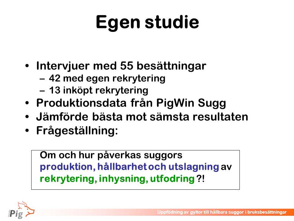 Föreläsningsrubrik / temaUppfödning av gyltor till hållbara suggor i bruksbesättningar Egen studie •Intervjuer med 55 besättningar –42 med egen rekryt