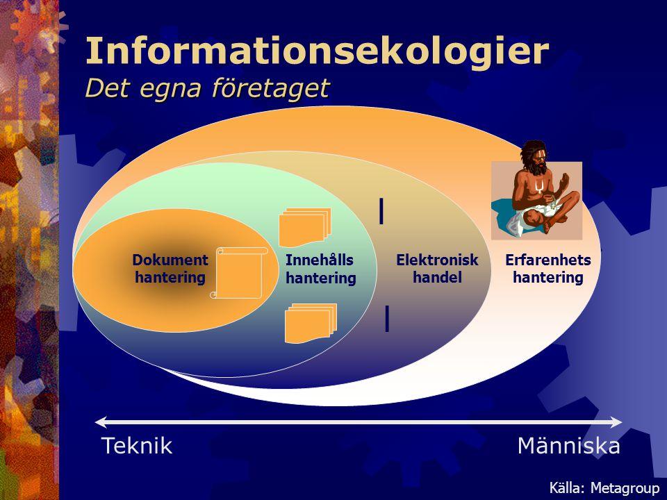 Det egna företaget Informationsekologier Det egna företaget Dokument hantering Innehålls hantering Elektronisk handel Erfarenhets hantering l l Källa: Metagroup TeknikMänniska