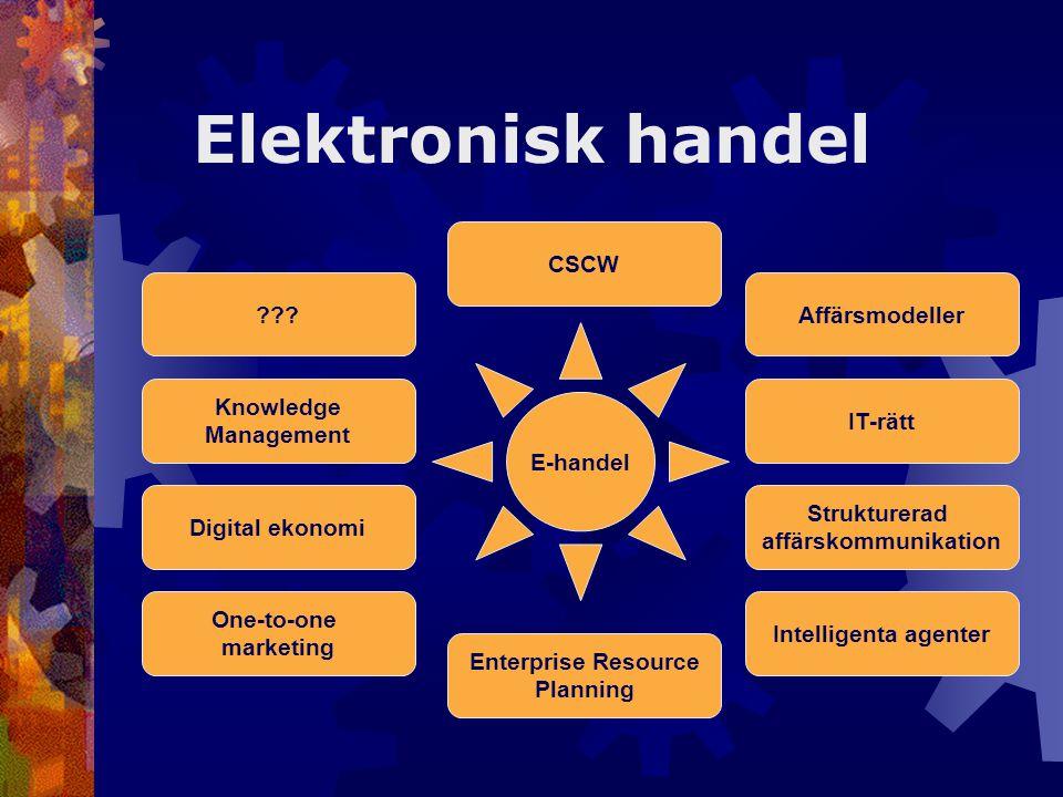 Digital ekonomi One-to-one marketing Enterprise Resource Planning Intelligenta agenter Strukturerad affärskommunikation IT-rätt Affärsmodeller Knowled