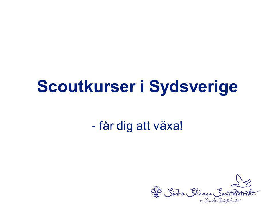 Scoutkurser i Sydsverige - får dig att växa!