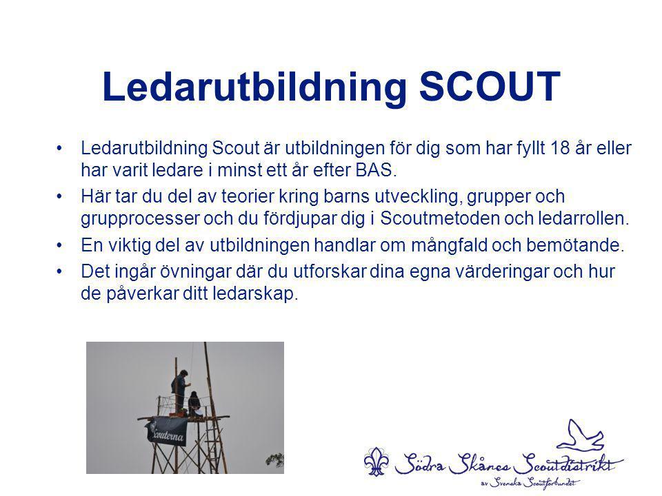 Ledarutbildning SCOUT •Ledarutbildning Scout är utbildningen för dig som har fyllt 18 år eller har varit ledare i minst ett år efter BAS.