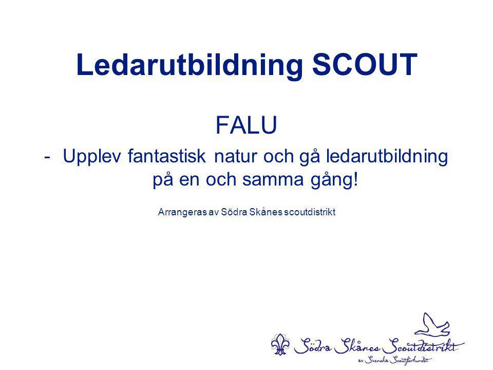 Ledarutbildning SCOUT FALU -Upplev fantastisk natur och gå ledarutbildning på en och samma gång.