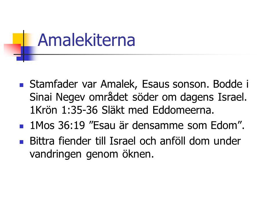 Amalekiterna  Stamfader var Amalek, Esaus sonson. Bodde i Sinai Negev området söder om dagens Israel. 1Krön 1:35-36 Släkt med Eddomeerna.  1Mos 36:1