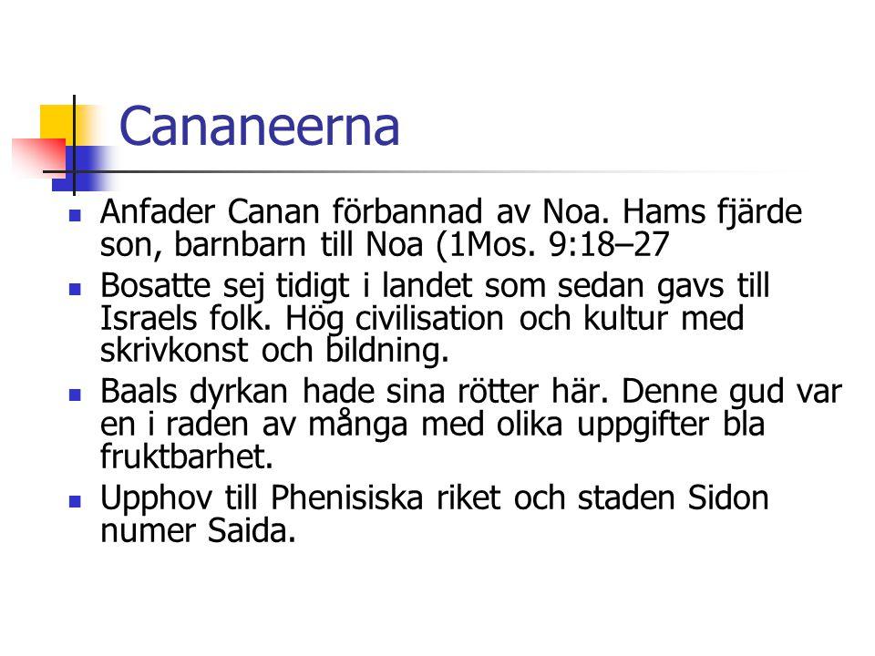 Cananeerna  Anfader Canan förbannad av Noa. Hams fjärde son, barnbarn till Noa (1Mos. 9:18–27  Bosatte sej tidigt i landet som sedan gavs till Israe