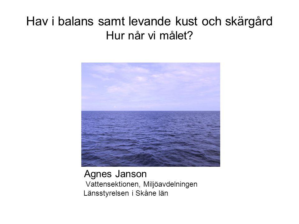 Hav i balans samt levande kust och skärgård Hur når vi målet? Agnes Janson Vattensektionen, Miljöavdelningen Länsstyrelsen i Skåne län