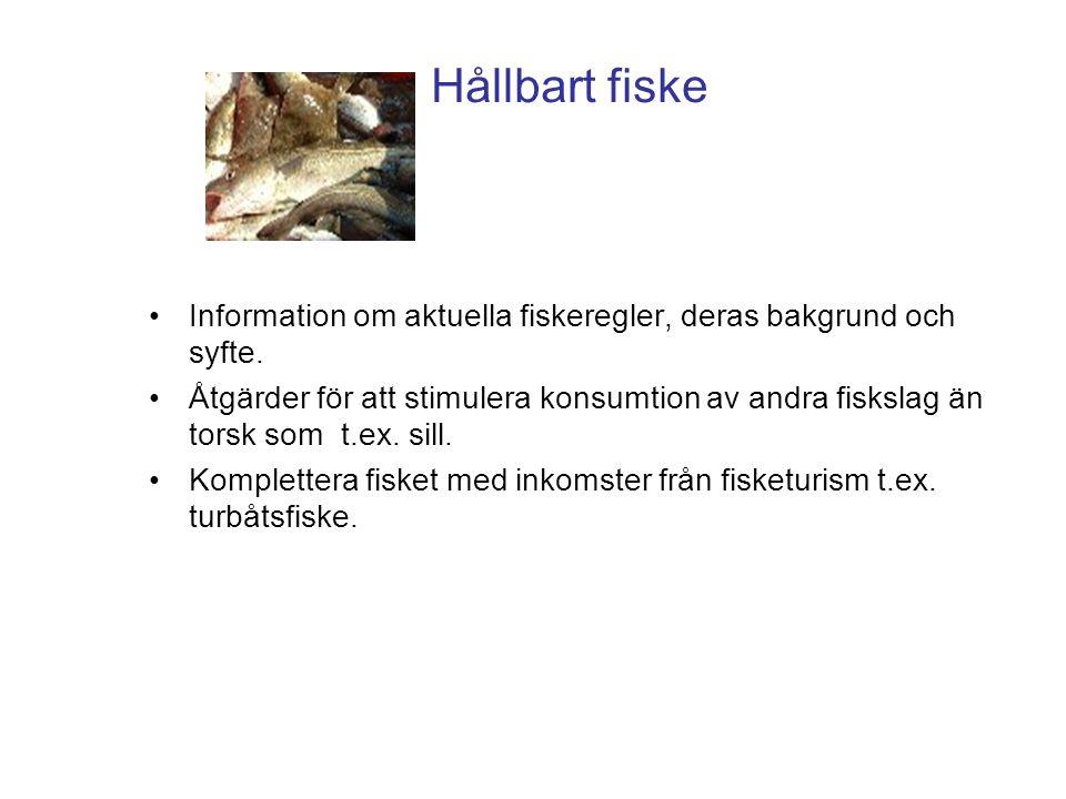 Hållbart fiske •Information om aktuella fiskeregler, deras bakgrund och syfte. •Åtgärder för att stimulera konsumtion av andra fiskslag än torsk som t