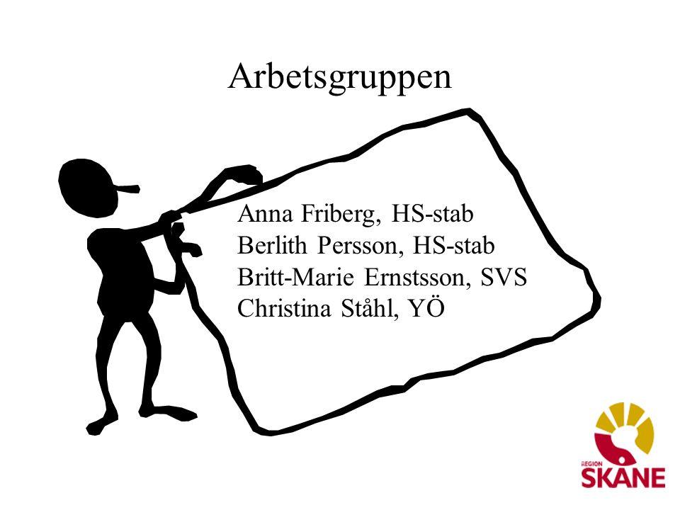 Arbetsgruppen Anna Friberg, HS-stab Berlith Persson, HS-stab Britt-Marie Ernstsson, SVS Christina Ståhl, YÖ