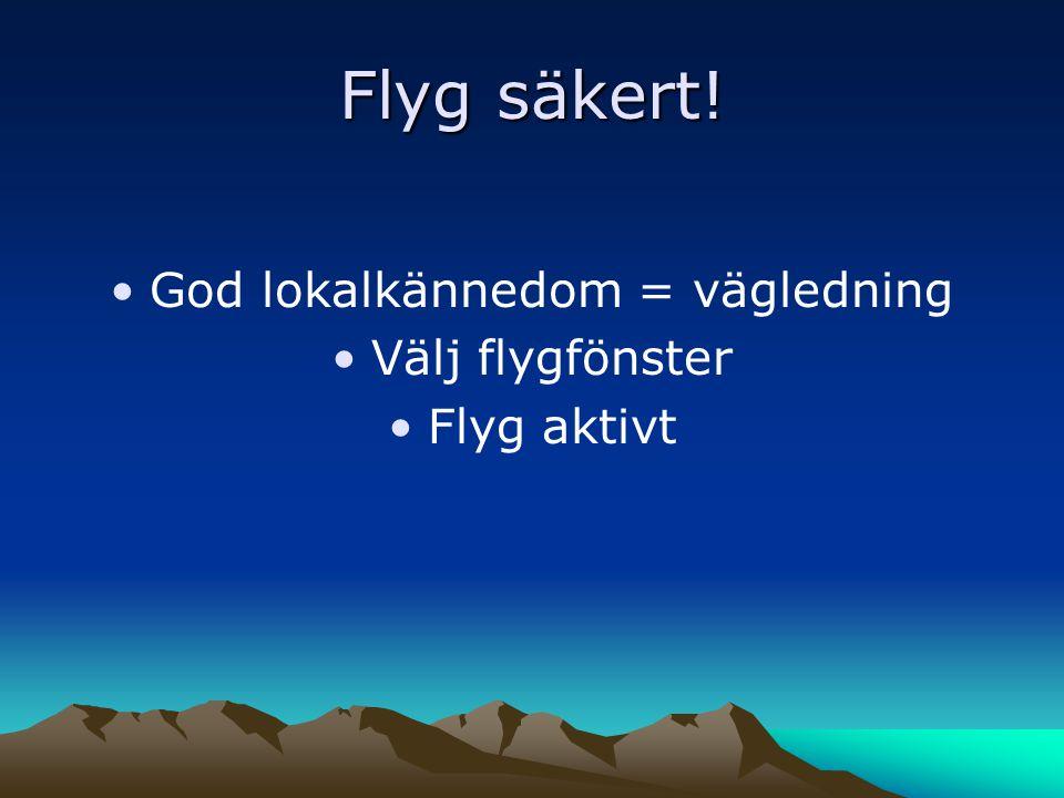 Flyg säkert! •God lokalkännedom = vägledning •Välj flygfönster •Flyg aktivt