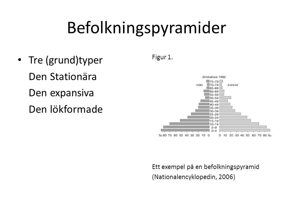 Befolkningspyramider • Tre (grund)typer Den Stationära Den expansiva Den lökformade Figur 1. Ett exempel på en befolkningspyramid (Nationalencyklopedi