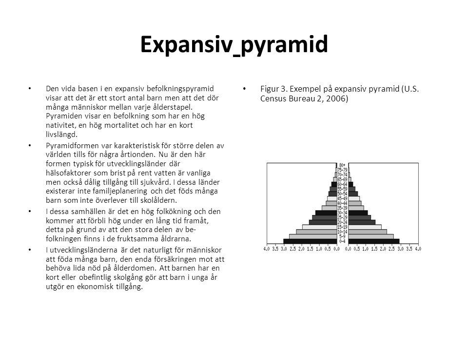 Expansiv pyramid • Den vida basen i en expansiv befolkningspyramid visar att det är ett stort antal barn men att det dör många människor mellan varje