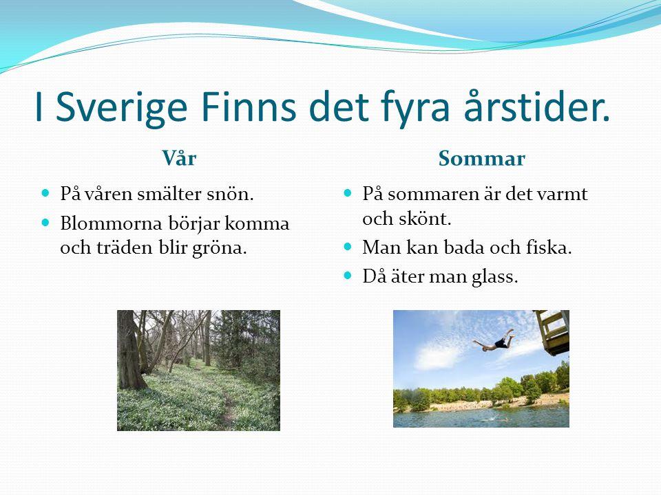 I Sverige Finns det fyra årstider. Vår Sommar  På våren smälter snön.  Blommorna börjar komma och träden blir gröna.  På sommaren är det varmt och