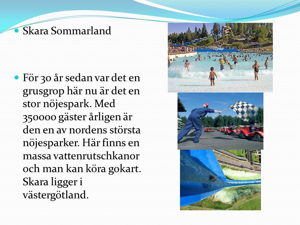  Skara Sommarland  För 30 år sedan var det en grusgrop här nu är det en stor nöjespark. Med 350000 gäster årligen är den en av nordens största nöjes