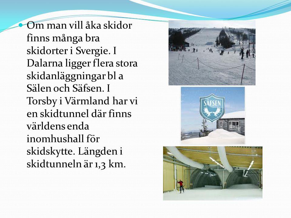  Om man vill åka skidor finns många bra skidorter i Svergie.