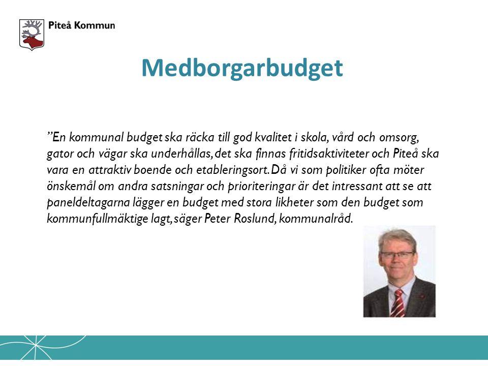 En kommunal budget ska räcka till god kvalitet i skola, vård och omsorg, gator och vägar ska underhållas, det ska finnas fritidsaktiviteter och Piteå ska vara en attraktiv boende och etableringsort.