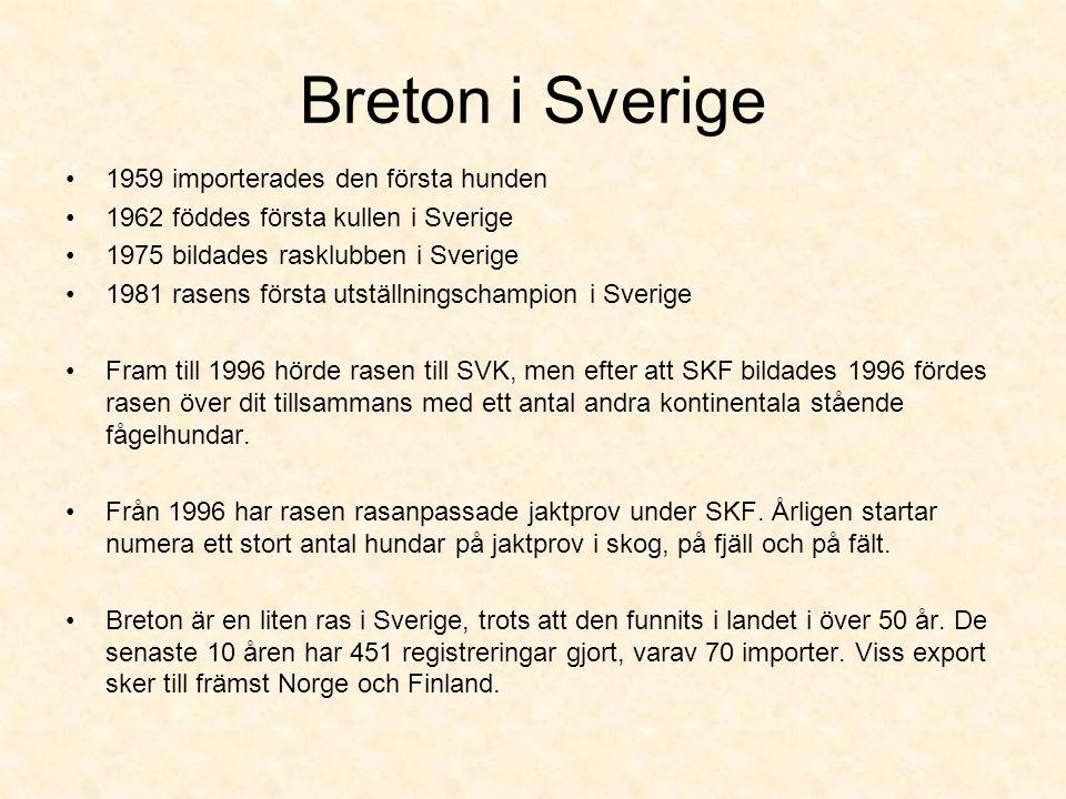 Breton i Sverige •1959 importerades den första hunden •1962 föddes första kullen i Sverige •1975 bildades rasklubben i Sverige •1981 rasens första utställningschampion i Sverige •Fram till 1996 hörde rasen till SVK, men efter att SKF bildades 1996 fördes rasen över dit tillsammans med ett antal andra kontinentala stående fågelhundar.