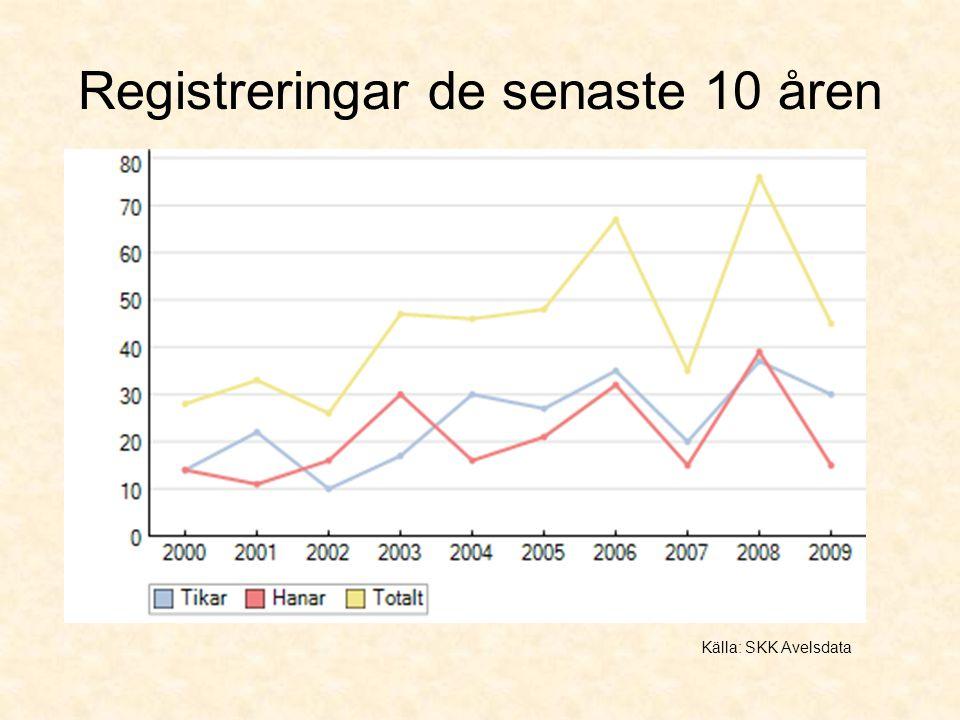Registreringar de senaste 10 åren Källa: SKK Avelsdata