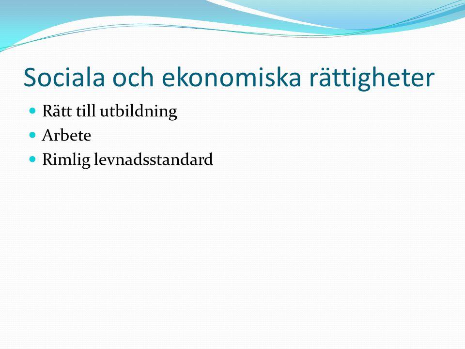 Sociala och ekonomiska rättigheter  Rätt till utbildning  Arbete  Rimlig levnadsstandard