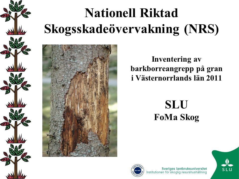 Nationell skogsskadeövervakning • En långsiktig övervakning RIKSSKOGSTAXERINGEN (RT) • Långsiktig övervakning av insekter Fällfångster av barkborrar • Diagnos och rapporteringssystem SkogsSkada • Riktade inventeringar Nationell Riktad Skogsskadeinventering (NRS) SLU FoMa