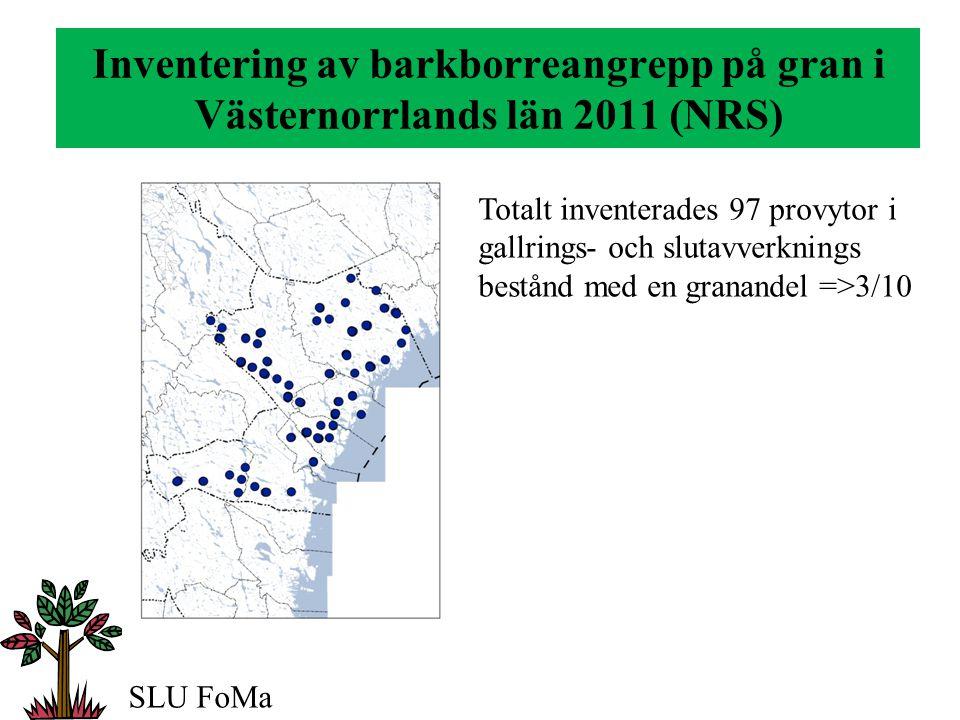 Inventering av barkborreangrepp på gran i Västernorrlands län 2011 (NRS) Angripen gran 2011 Färska angrepp •32 % av ytorna •1,8 träd / yta Dubbelögad bastborre •2,1 träd / yta Granbarkborre SLU FoMa