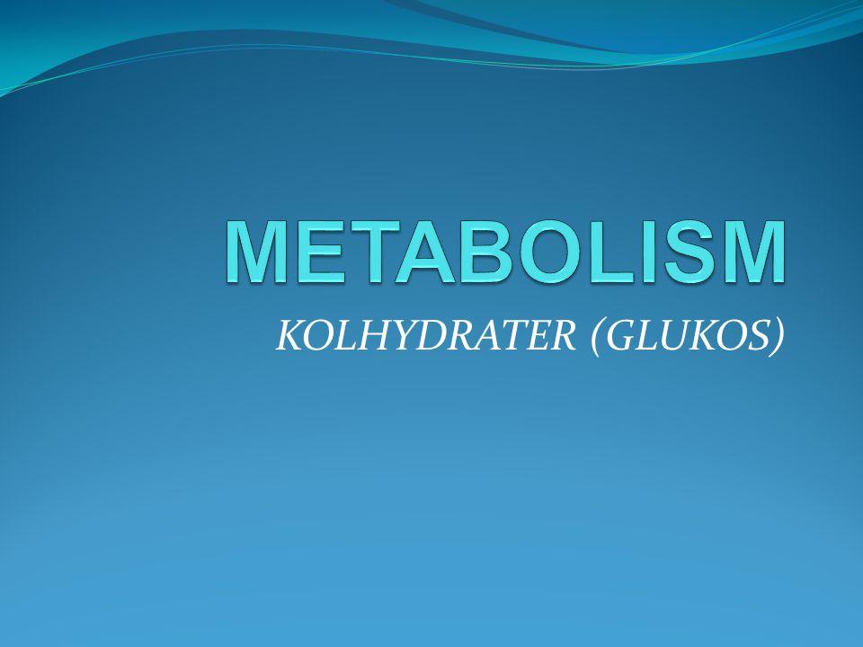 KOLHYDRATER (GLUKOS)