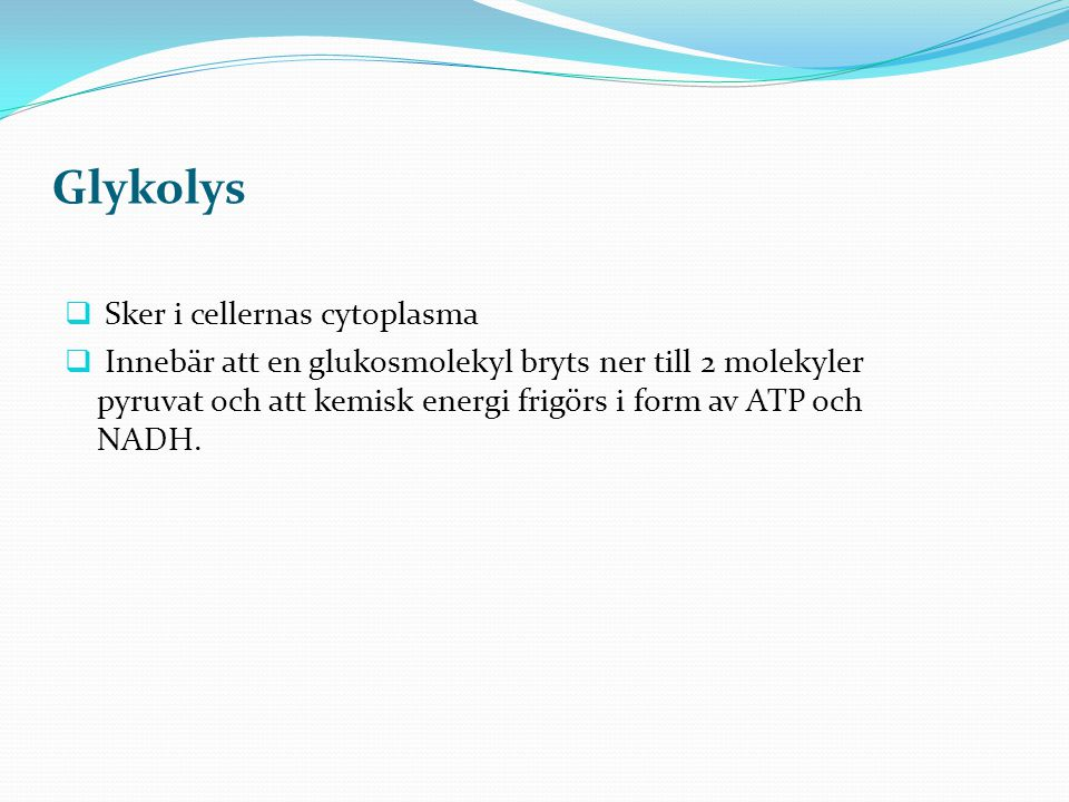 Glykolys  Sker i cellernas cytoplasma  Innebär att en glukosmolekyl bryts ner till 2 molekyler pyruvat och att kemisk energi frigörs i form av ATP o