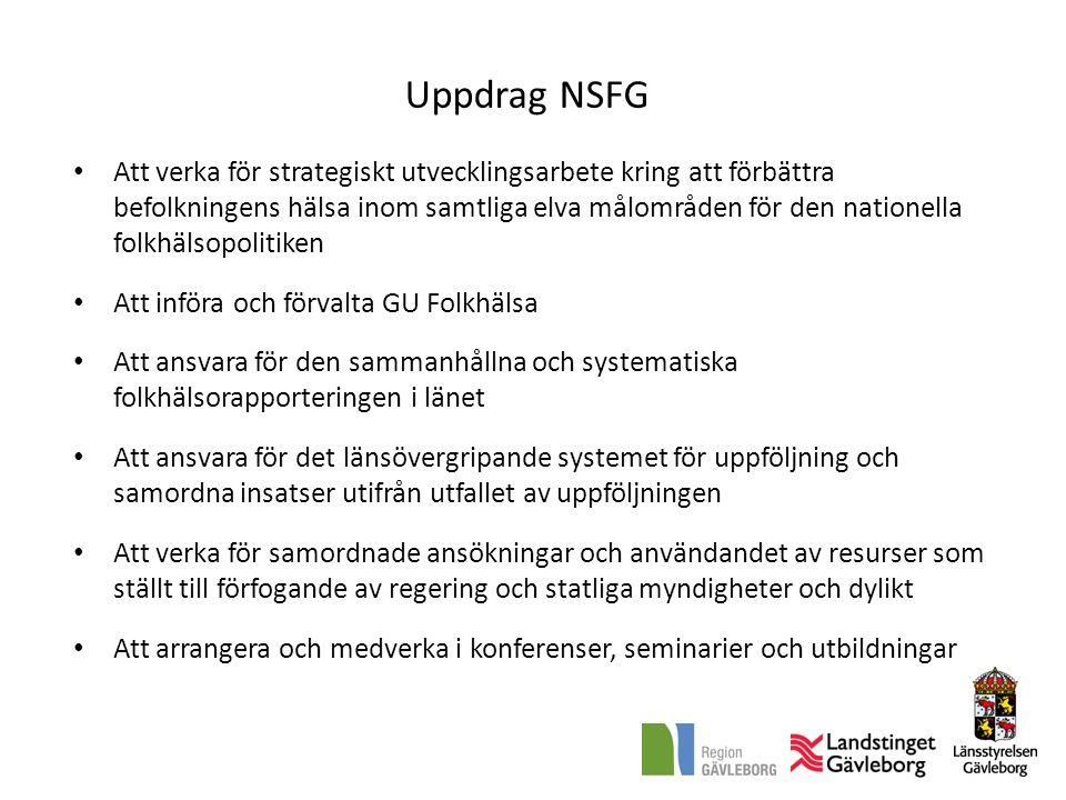 Uppdrag NSFG • Att verka för strategiskt utvecklingsarbete kring att förbättra befolkningens hälsa inom samtliga elva målområden för den nationella fo