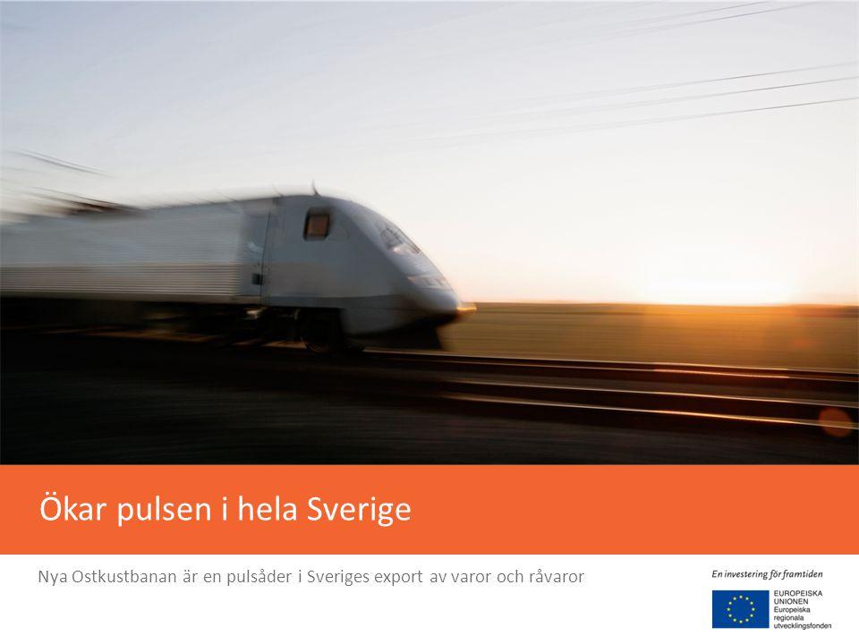 Gör norra Sverige mer uthålligt Ökar välbefinnandet i att bo, studera och arbeta i Västernorrland och Gävleborg.
