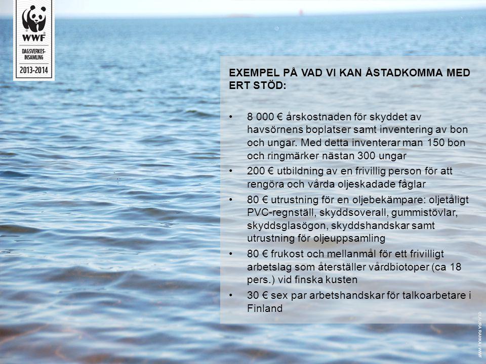 EXEMPEL PÅ VAD VI KAN ÅSTADKOMMA MED ERT STÖD: •8 000 € årskostnaden för skyddet av havsörnens boplatser samt inventering av bon och ungar. Med detta