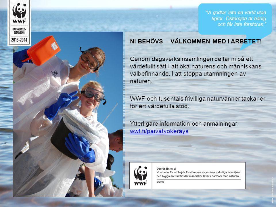 """""""Vi godtar inte en värld utan tigrar. Östersjön är härlig och får inte förstöras."""" NI BEHÖVS – VÄLKOMMEN MED I ARBETET! Genom dagsverksinsamlingen del"""