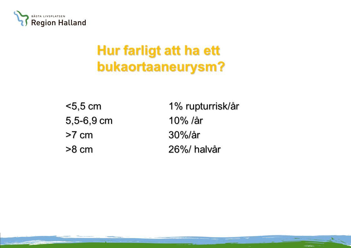 Hur farligt att ha ett bukaortaaneurysm? <5,5 cm1% rupturrisk/år 5,5-6,9 cm10% /år >7 cm30%/år >8 cm26%/ halvår