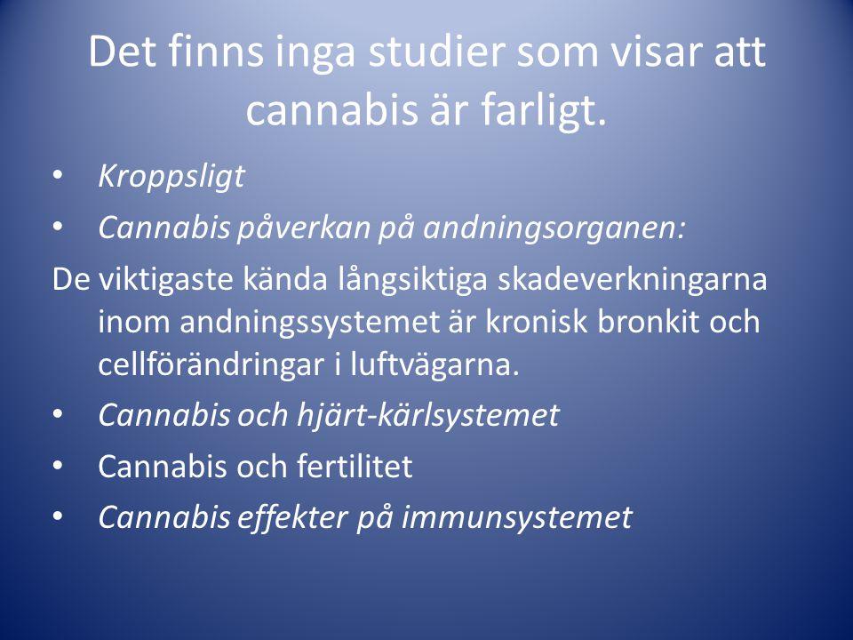 Det finns inga studier som visar att cannabis är farligt. • Kroppsligt • Cannabis påverkan på andningsorganen: De viktigaste kända långsiktiga skadeve