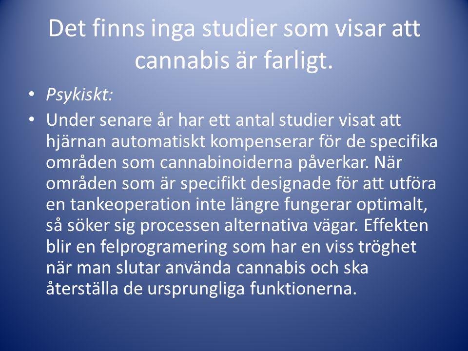 Det finns inga studier som visar att cannabis är farligt. • Psykiskt: • Under senare år har ett antal studier visat att hjärnan automatiskt kompensera