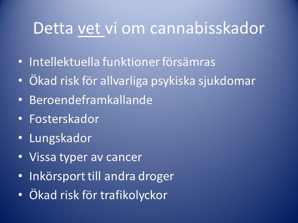 Detta vet vi om cannabisskador • Intellektuella funktioner försämras • Ökad risk för allvarliga psykiska sjukdomar • Beroendeframkallande • Fosterskad