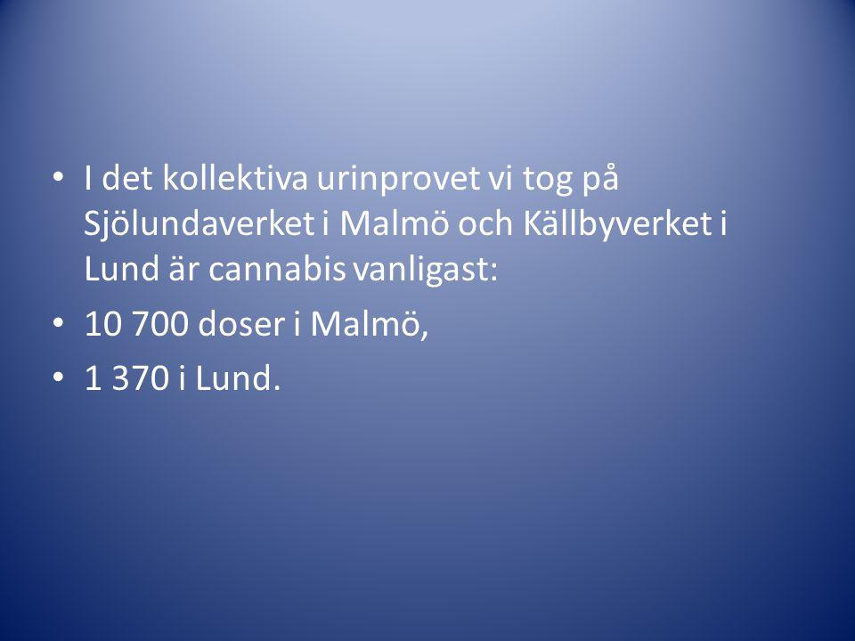 • I det kollektiva urinprovet vi tog på Sjölundaverket i Malmö och Källbyverket i Lund är cannabis vanligast: • 10 700 doser i Malmö, • 1 370 i Lund.