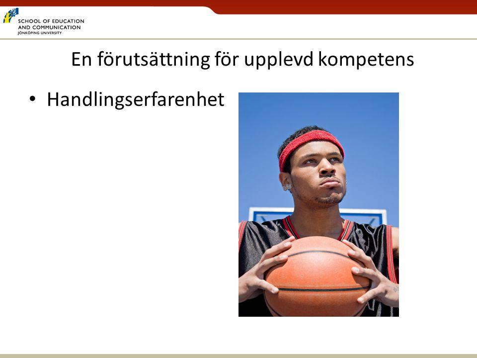 Grön flagg och påverkanshandlingar Per Askerlund Magnus Apelqvist Ellen Almers Ulrica Stagell HLK