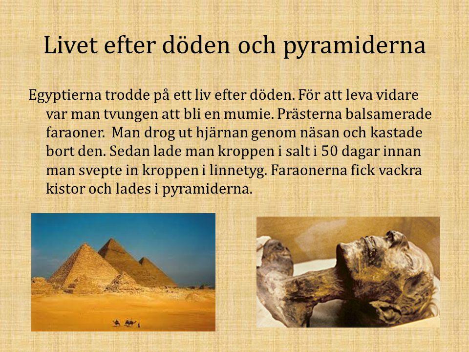 Livet efter döden och pyramiderna Egyptierna trodde på ett liv efter döden. För att leva vidare var man tvungen att bli en mumie. Prästerna balsamerad