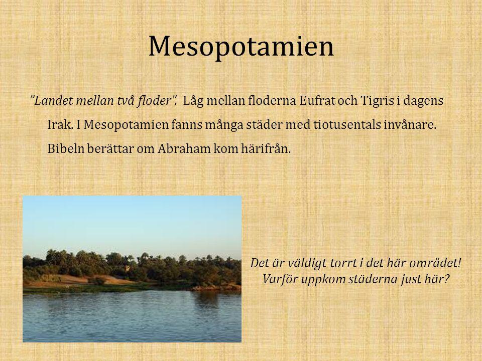 """Mesopotamien """"Landet mellan två floder"""". Låg mellan floderna Eufrat och Tigris i dagens Irak. I Mesopotamien fanns många städer med tiotusentals invån"""