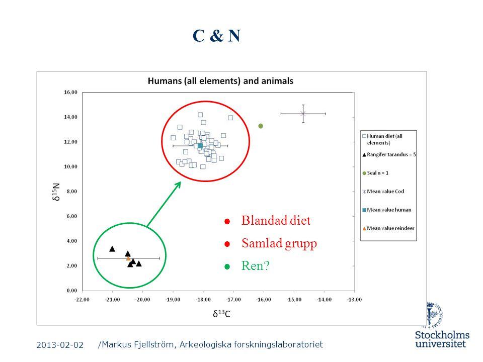 C & N ● Blandad diet ● Samlad grupp ● Ren? /Markus Fjellström, Arkeologiska forskningslaboratoriet 2013-02-02