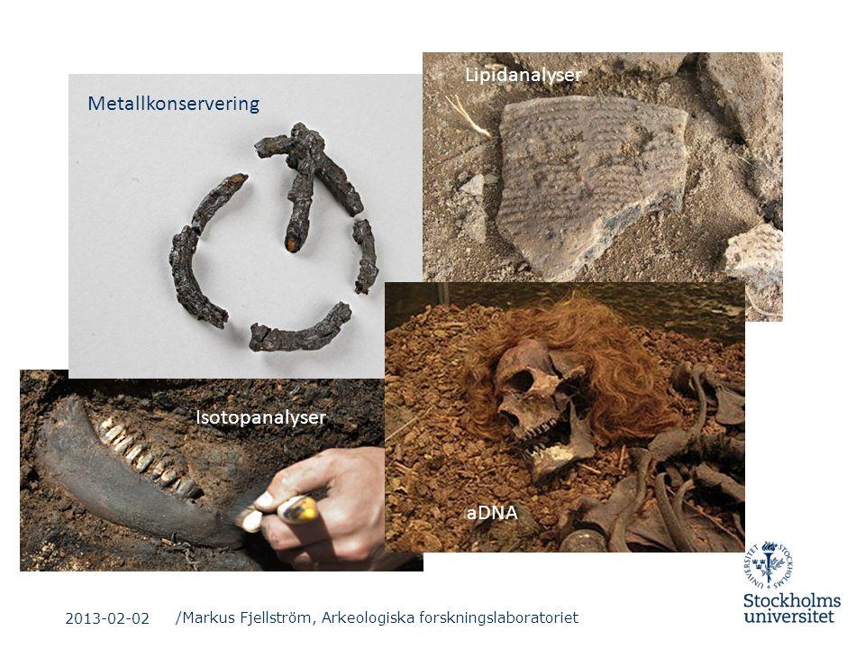 /Markus Fjellström, Arkeologiska forskningslaboratoriet Metallkonservering Lipidanalyser aDNA Isotopanalyser