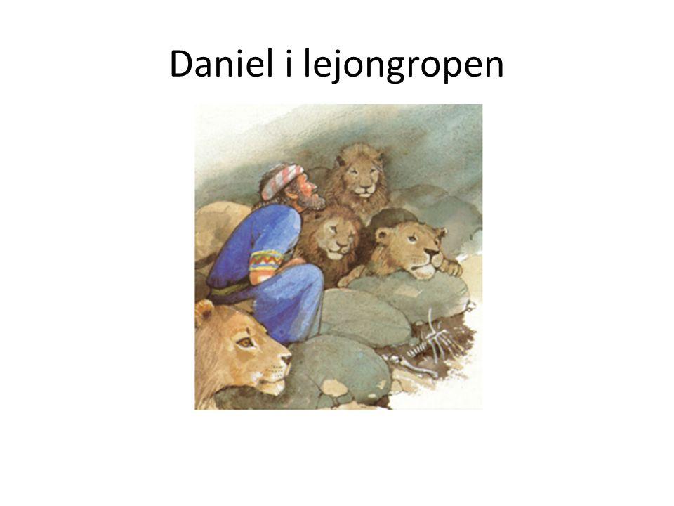 • Daniel är en arbetsam kille. Han är med och planerar allt möjligt tillsammans med kungen.