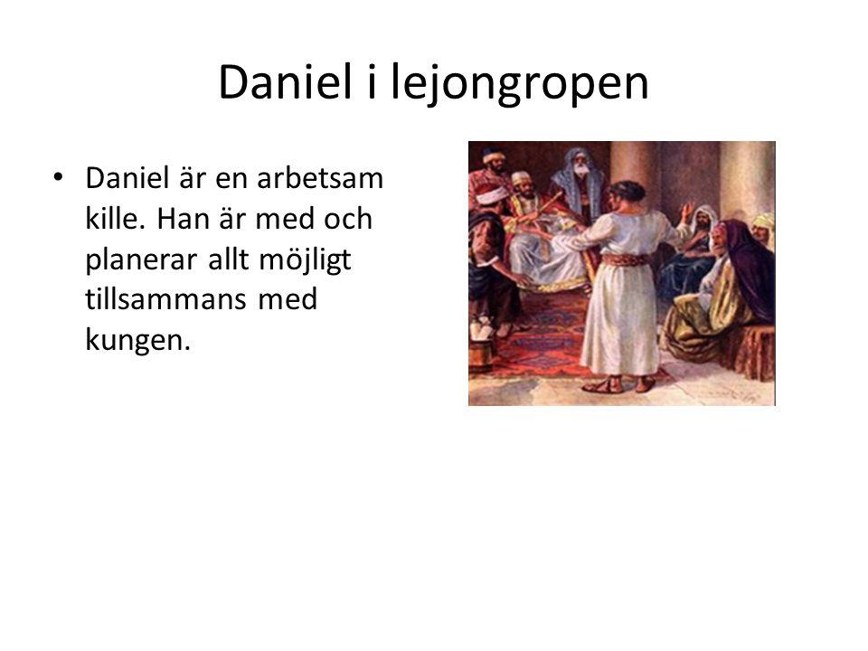 Daniel i lejongropen • Många är avundsjuka på Daniel och vill ta Daniels plats.