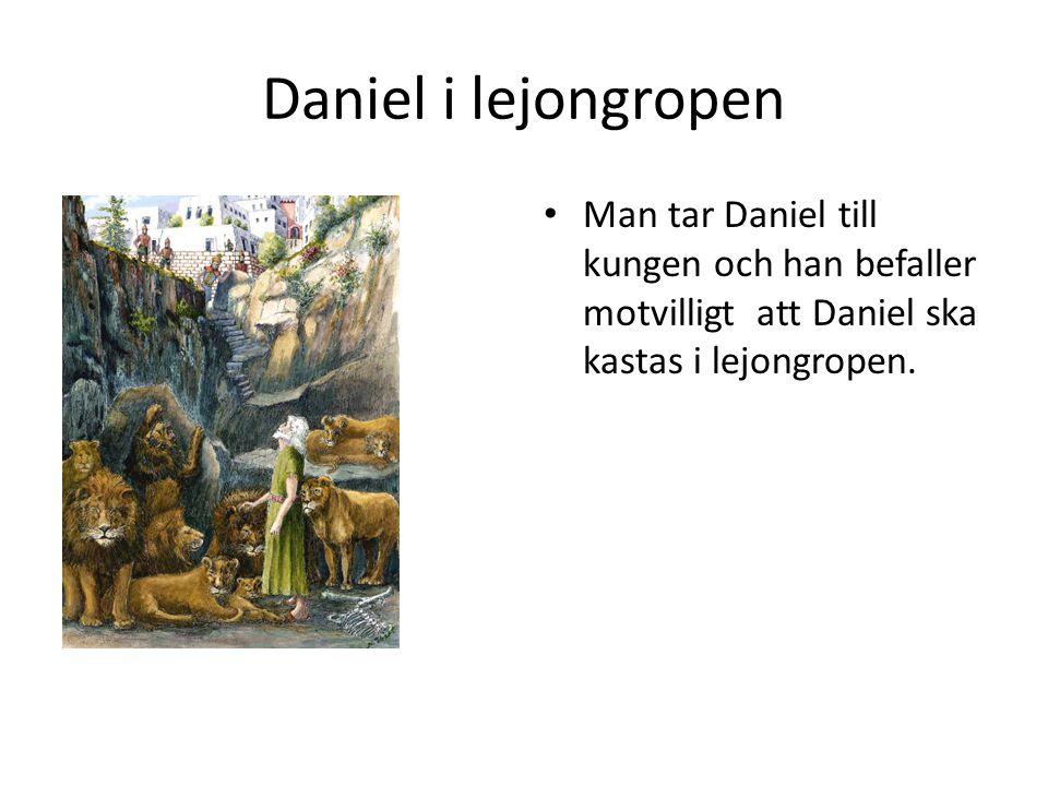 Daniel i lejongropen • Ängeln tejpade igen lejonens munnar. De kunde då inte skada Daniel.