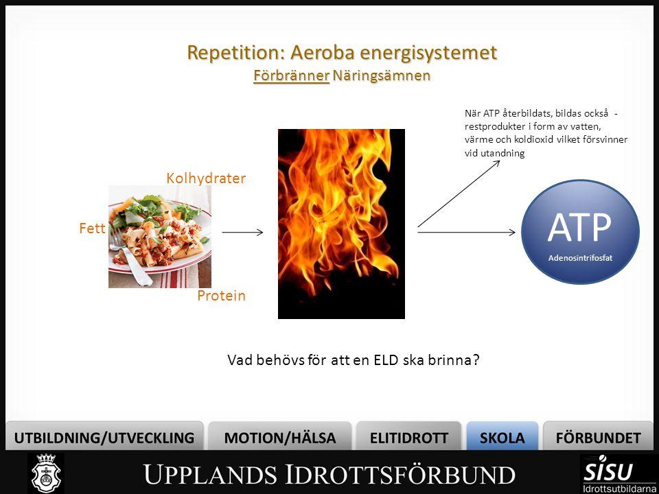 Repetition: Aeroba energisystemet Förbränner Näringsämnen Vad behövs för att en ELD ska brinna? ATP Adenosintrifosfat Kolhydrater Fett Protein När ATP