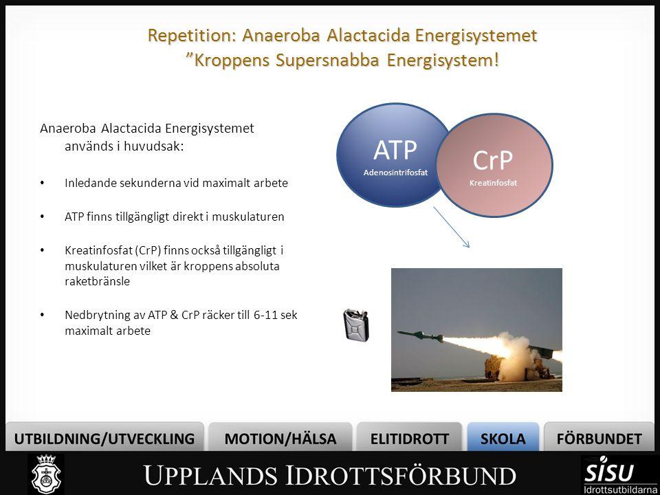 Repetition: Anaeroba Lactacida Energisystemet Spjälkning – ett snabbare sätt än Förbränning ATP Adenosintrifosfat Kolhydrater Återbildar ATP snabbt När ATP återbildats genom SPJÄLKNING, bildas också restprodukter i form av mjölksyra och andra surhetsrelaterade produkter vilket försämrar muskelfunktionen MJÖLKSYRA Vi får ATP snabbt men får betala med… SPJÄLKAR