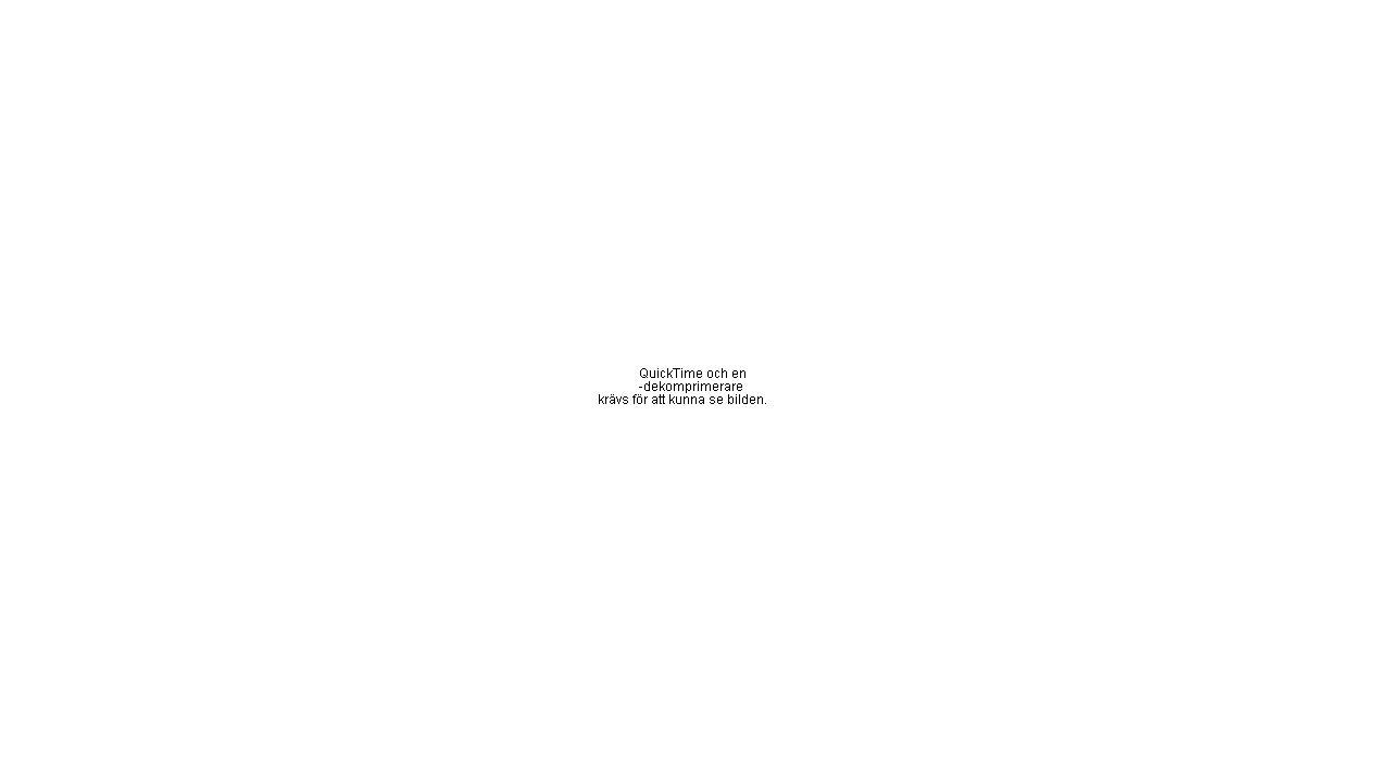 Källkritik Historia: Genom undervisningen i ämnet historia ska eleverna sammanfattningsvis ges förutsättningar att utveckla sin förmåga att: [...] •kritiskt granska, tolka och värdera källor som grund för att skapa historisk kunskap, Svenska: Vidare ska undervisningen bidra till att eleverna utvecklar kunskaper om hur man söker och kritiskt värderar information från olika källor.