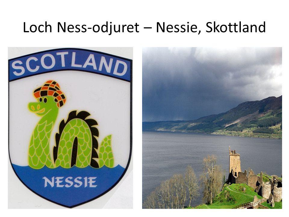 Loch Ness-odjuret – Nessie, Skottland
