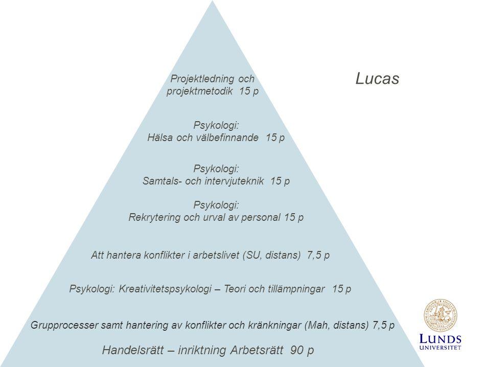 Handelsrätt – inriktning Arbetsrätt 90 p Psykologi: Rekrytering och urval av personal 15 p Psykologi: Hälsa och välbefinnande 15 p Projektledning och